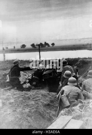 German anti-tank gun position at the beginning of the Russian campaign, 1941 - Stock Photo