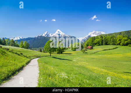 Idyllic landscape in the Alps with fresh green mountain pastures and snow-capped mountain tops in the background - Stock Photo