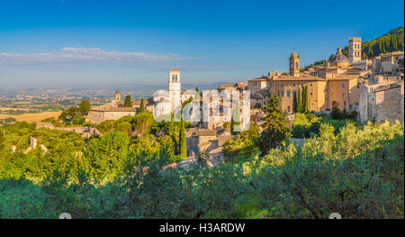 Panoramic view of the historic town of Assisi in beautiful golden morning light at sunrise in summer, Umbria, Italy - Stock Photo