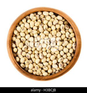 Soybeans in wooden bowl on white background. Glycine max, also known as soya bean is a legume and oilseed. - Stock Photo