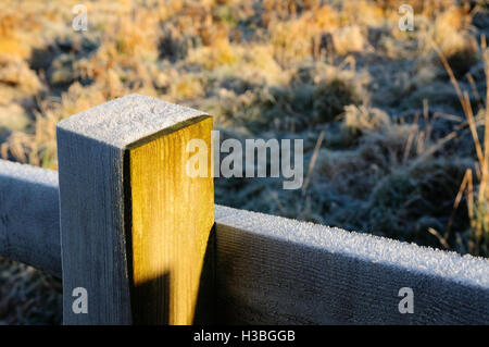 White frost on a fence post. - Stock Photo