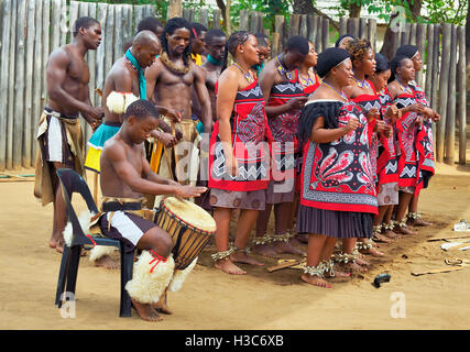 Swazi dance troupe in traditional clothes chanting singing and dancing at Mantenga Cultural Village,  Ezulwini Valley,Swaziland - Stock Photo