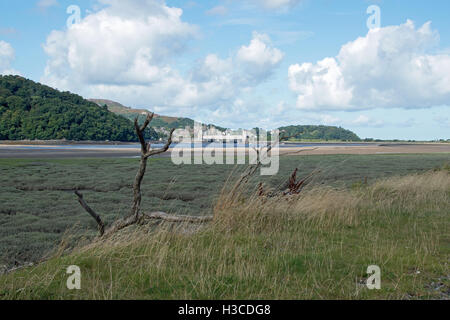 River Conwy and Conwy Castle - Stock Photo