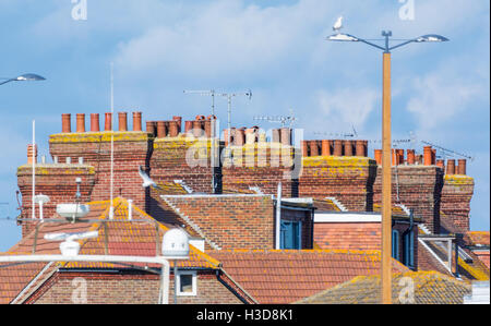 Row of red brick chimney stacks on old houses in the UK. - Stock Photo