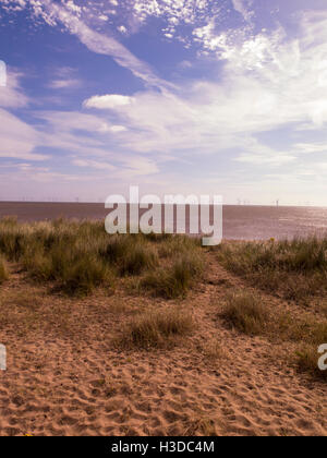 Beach Lincolnshire UK - Stock Photo
