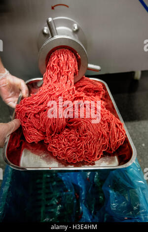 Minced meat coming out from grinder - Stock Photo