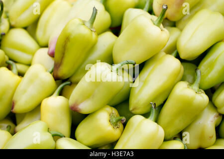 pepper background close up, healthy eating vitamins, vegetarianism - Stock Photo