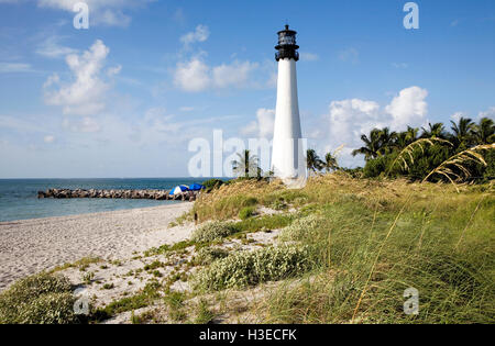 Cape Florida Light overlooking the Biscayne Channel amid a cascade of sea oats on a brilliant sunny morning in Florida. - Stock Photo