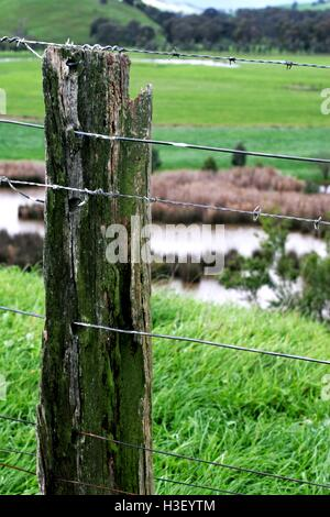 Old, mossy, wooden fence post, with lush green farmland beyond. - Stock Photo