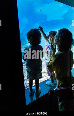 Singapore, Sentosa, SEA Aquarium, mother and children viewing fish in large tank - Stock Photo