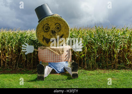 A giant Halloween scarecrow made out of straw bales in a farm setting. - Stock Photo