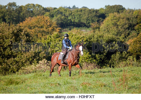 Young woman riding in open field UK - Stock Photo