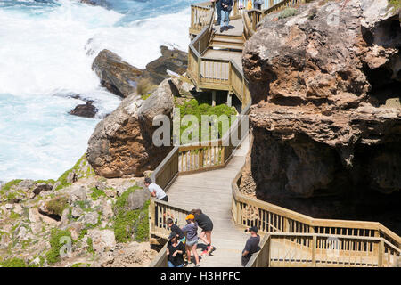 Tourists stood by Admirals arch looking at seals, Cape Du Couedic, Flinders chase national park, South australia - Stock Photo