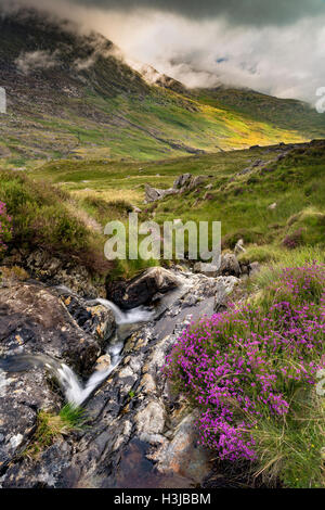 A stream off Nant Gwryd flows from Llyn Cwmffynnon leading into Dyffryn Mymbyr. - Stock Photo