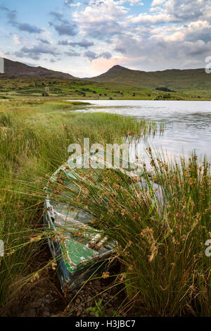 A rowing boats are moored up on the shore of Llyn y Gader, Snowdonia. - Stock Photo