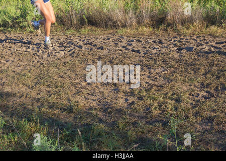 Youthful athletes running cross country - Stock Photo