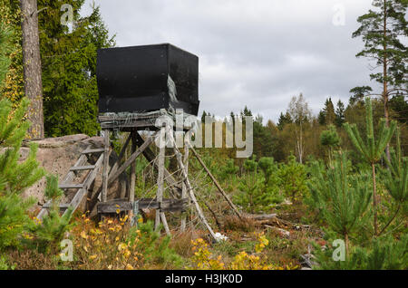 Weathered hunting tower in a forest with young pine trees - Stock Photo