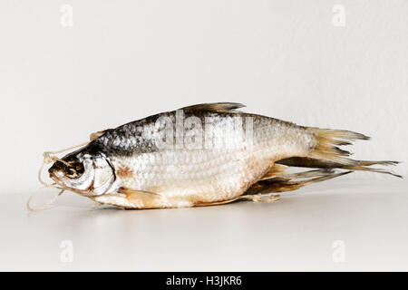 Dried fish on the table. Salty dry river fish on a white background. Dead dry salty fish - snack to beer. Isolated - Stock Photo