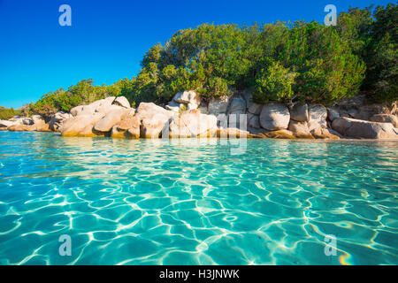 Santa Giulia beach with red rocks, pine trees and azure clear water, Corsica, France. - Stock Photo