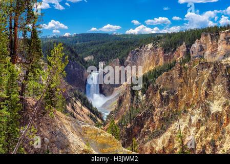 Yellowstone National Park, Lower Falls, Wyoming - United States of America - Stock Photo