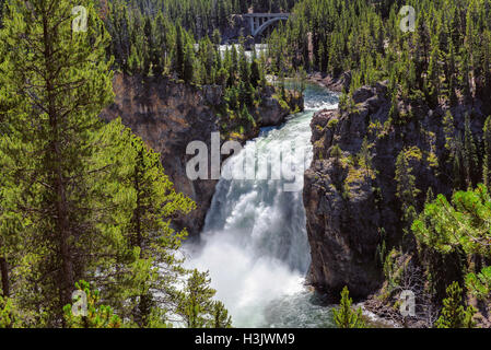 Falls at Grand Canyon of the Yellowstone National Park - Stock Photo