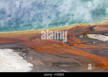 Steaming Grand Prismatic Spring - Stock Photo
