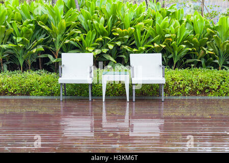 Green garden with an outdoor furniture group with rattan chairs and table in a patio, canna and shrub, - Stock Photo