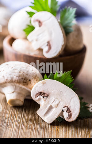 Mushroom. Champions mushrooms in different positions with herb decoration. - Stock Photo