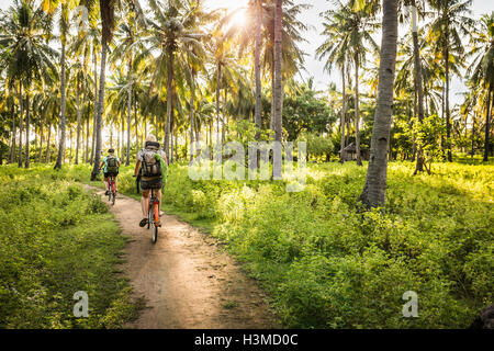 Rear view of two young women cycling in palm tree forest, Gili Meno, Lombok, Indonesia - Stock Photo