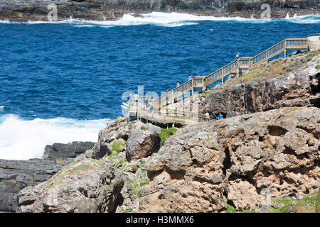 Boardwalk to Admirals arch Rugged coastline Kangaroo Island, Cape Du Couedic in Flinders chase national park, South - Stock Photo