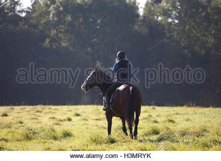 Young woman riding her horse in an open field UK - Stock Photo