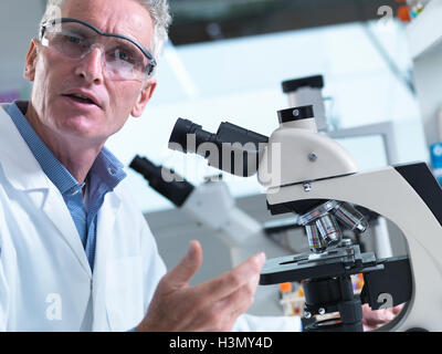 Scientist viewing tissue samples under a light microscope in a laboratory - Stock Photo