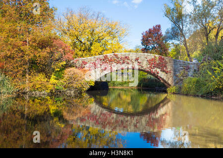 beautiful fall season view of Central Park in New York City with pond and bridge during colorful autumn - Stock Photo