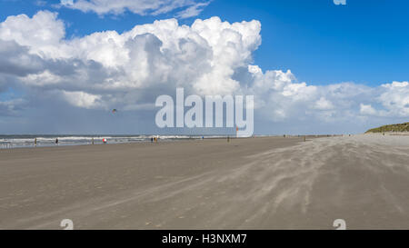 People enjoying a walk along a sandy beach on the north sea beneath towering white cumulus cloud formations in a - Stock Photo