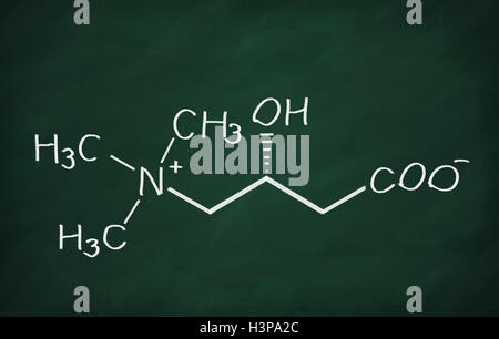 Structural model of Carnitine on the blackboard. - Stock Photo
