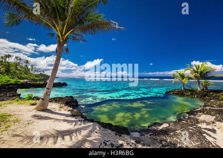 Natural infinity rock pool with palm trees over tropical ocean lagoon - Stock Photo