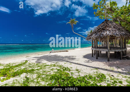 Tropical vibrant natural beach on Samoa Island with palm tree and fale - Stock Photo