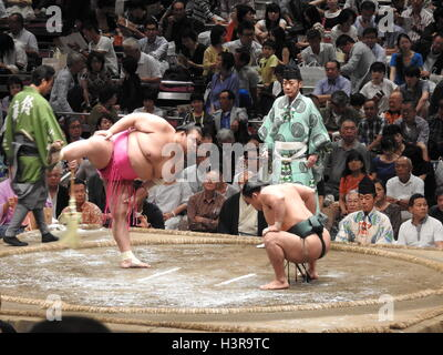 Sumo match set in September 2016 in Tokyo City - Stock Photo
