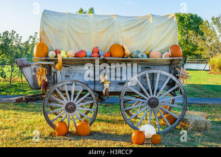 Covered Wagon adorned in pumpkins and gourds. - Stock Photo