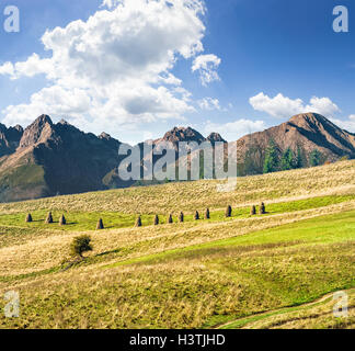 Composite Landscape image. Lonely tree near haystacks on rural fields at the foot of Tatra mountains - Stock Photo
