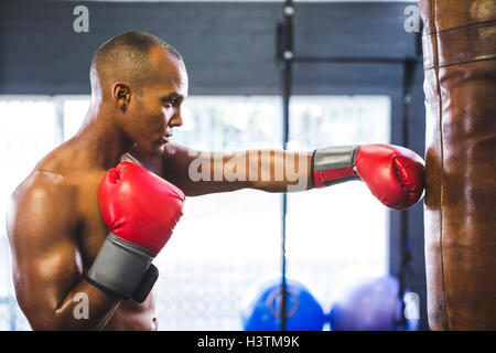 Male boxer punching bag in fitness studio - Stock Photo