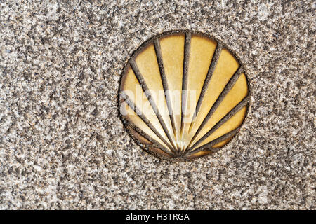 Figure of a Scallop in the asphalt, a guide for St. James pilgrims, Santiago de Compostela, Corunna, Galicia, Spain - Stock Photo