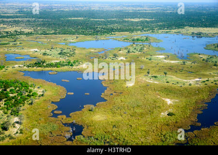 Aerial view, Okavango Delta, Botswana - Stock Photo