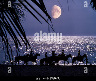 SILHOUETTED ANONYMOUS HORSEBACK RIDERS ON MOONLIT BEACH PUERTO VALLARTA, MEXICO - Stock Photo