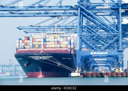 The MSC Venice container ship being unloaded in the port of Felixstowe. Felixstowe, Suffolk, England, UK - Stock Photo