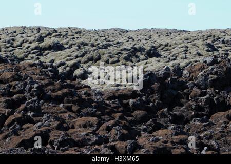 moss covered lava boulder fields near Kirkjubaejarklaustur Iceland - Stock Photo