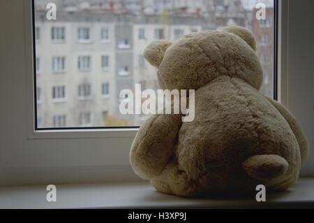 Teddy-bear on the windowsill - Stock Photo