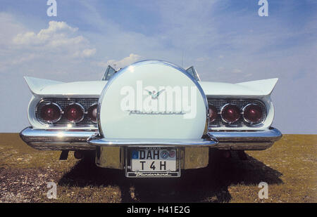 Old-timer, Ford Thunderbird, year manufacture in 1956, rear view only editorially car, passenger car, vehicle, white, - Stock Photo