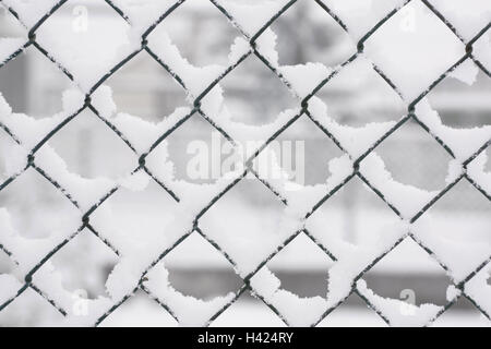 Mesh wire fence, detail, fence, wire netting, wire, wire fence ...
