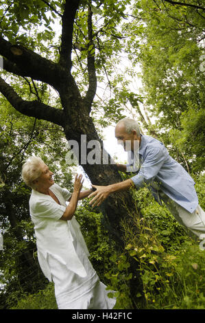 Garden, tree, Senior couple, play to trap summer, leisure time, fun, amusement, joy life, happy, falls in love, - Stock Photo